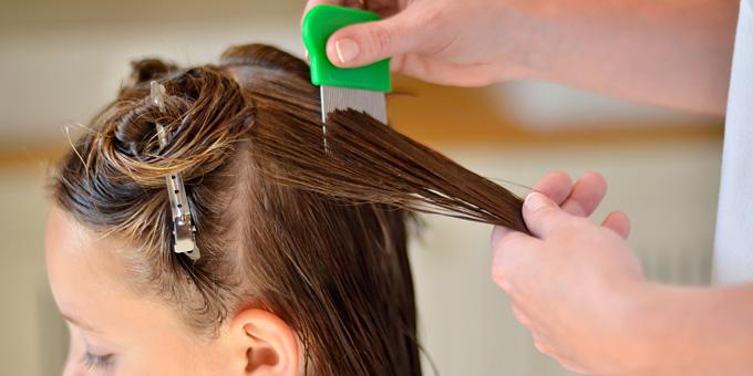 Вычесывание вшей на длинных волосах гребнем