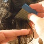 Как удалить вшей и гнид самостоятельно